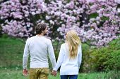 Sensual Couple Hold Hands In Spring Park, Back View. Woman And Man Date In Blossoming Garden. Spring poster