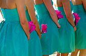 Постер, плакат: Подружки невесты холдинг горячей розовые цветы