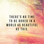 Quote - Theres no time to be bored in a world as beautiful as this poster