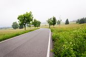 Empty Road In The Middle Of Sumava Mountains, Green Trees Alley With Thick Fog In The Background, Ho poster