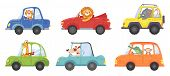 Cute Animals In Funny Cars. Animal Driver, Pets Vehicle And Happy Lion In Car Kid. Transportation An poster