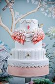 foto of cake stand  - Image of a beautifully decorated wedding cake