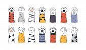 Cat Paws. Doodle Animal Foot, Cute Cartoon Kitten And Puppy Paws, Wild And Domestic Animals Foots. V poster