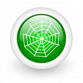 spider web green circle glossy web icon on white background