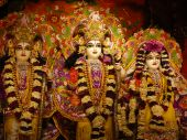 stock photo of radha  - Hinduism Indian tempel in Vrindavan - JPG