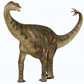 stock photo of behemoth  - Spinophorosaurus is a sauropod dinosaur from Niger that lived in the Jurassic Period - JPG