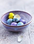foto of quail  - Colorful Quail Eggs in a Ceramic Bowl - JPG