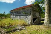 stock photo of shacks  - An abandoned shack or garage in the sunshine with overgrown field - JPG