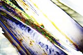 picture of psychodelic  - Microcrystals of tartaric acid in polarized light