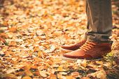stock photo of swag  - Feet Man walking on fall leaves Outdoor with Autumn season nature on background Lifestyle Fashion trendy style - JPG