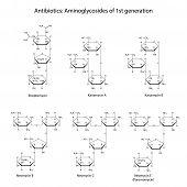 image of antibiotics  - Structural chemical formulas of aminoglycoside antibiotics of first generation - JPG