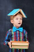 stock photo of diligent  - Redhead primary - JPG