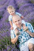 picture of lavender field  - happy dad with baby son in lavender field