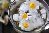 image of chamomile  - Glass of cold chamomile tea with ice cubes and chamomile flowers - JPG