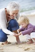 pic of granddaughter  - Grandmother And Granddaughter Looking at Shell On Beach Together - JPG
