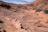 image of wilder  - Edmaiers Secret are fields of socalled Brainrocks they are located at Vermilion Cliffs Wilderness Utah USA - JPG