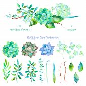 Постер, плакат: Vector floral set Colorful floral collection with leaves and flowers drawing watercolor