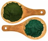 pic of chlorella  - chlorella ans spirulina supplemt powder  - JPG