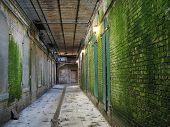 Tunnel, Alcatraz, Green poster