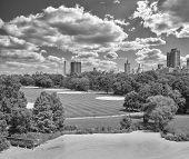 Постер, плакат: Black And White Photo Of Central Park