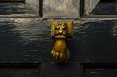 Door With Brass Knocker In The Shape Of A Decor,  Beautiful Entrance To The House, Vintage Decoratio poster
