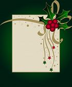 image of card christmas  - Christmas card with holly and stars on frames - JPG