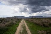 Long Straight Dirt Road Under Dramatic Clouds poster