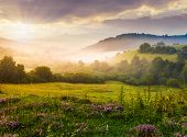 Gorgeous Foggy Sunrise In Carpathian Mountains. Lovely Summer Landscape Of Volovets District. Purple poster