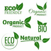 Organic Eco Vector Logos With Green Leaves. Bio Friendly Products Labels With Leaf. Organic Natural, poster