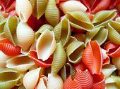 Pasta Shells Background. Multicolor Conchiglie Shell Pasta Texture Pattern Background. Red Green And poster