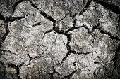 Cracked Earth , Hot And Dry Empty Land. Clay Soil To Crack Texture .drought Land Against A Sun With  poster