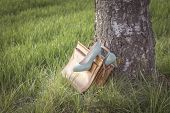Vintage Shoes Pumps Wayside In Nature Arouse Wanderlust In Bag. Symbol For Passion Adventures Sponta poster