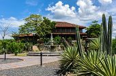 stock photo of hacienda  - Hacienda among several types of cacti costarica - JPG