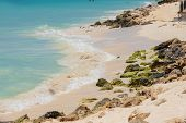 White Sand Beach And Turquoise Waves. Turquoise Sea Water And Blue Sky. Eagle Beach Of Aruba Island. poster