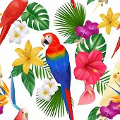 Tropical Pattern. Exotic Flowers And Birds Colored Beautiful Amazonian Parrots Vector Floral Seamles poster