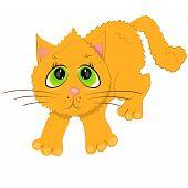 domestic cat icon. cartoon pet illustration poster