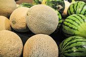 picture of melon  - melons on display shelf at the supremarket - JPG