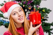 pic of merry chrismas  - Girl in front of Christmas tree with gift - JPG