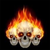 pic of fiery  - Three flaming skulls with fiery eyes - JPG