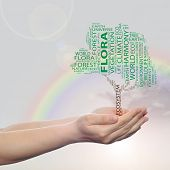 Concept or conceptual green ecology text word cloud tree in man or woman hand on rainbow sky backgro