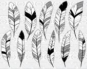 stock photo of tribal  - Vector Collection of Doodle Stylized Feathers with Tribal Patterned Background - JPG