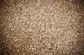 picture of stone floor  - the background image of terrazzo floor - JPG