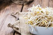 pic of soybean sprouts  - Mungbean Sprouts  - JPG