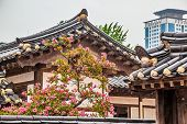 picture of korean  - Traditional old and modern korean buildings with tree and pink flowers at rainy day in South Korea - JPG