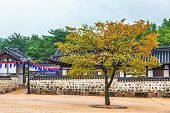 pic of korean  - Traditional korean village with old architecture and houses at autumn in South Korea - JPG