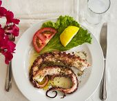 foto of ouzo  - grilled octopus Greek meze with glass of ouzo - JPG