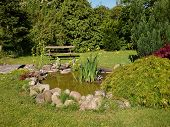 picture of fish pond  - Beautiful classical garden fish pond surrounded by grass gardening background - JPG