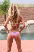 stock photo of derriere  - backside of sexy blond woman in bikini - JPG