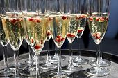 foto of flute  - Sparkling champagne flutes on tray with pomegranate seeds - JPG