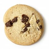 stock photo of shortbread  - Single round chocolate chip shortbread biscuit - JPG